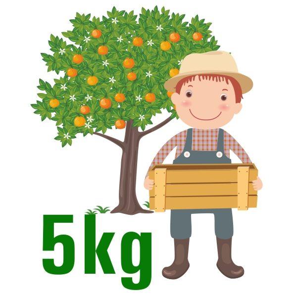 5kg-mandarinas